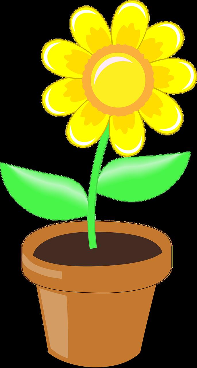 Yellow Flower Pot