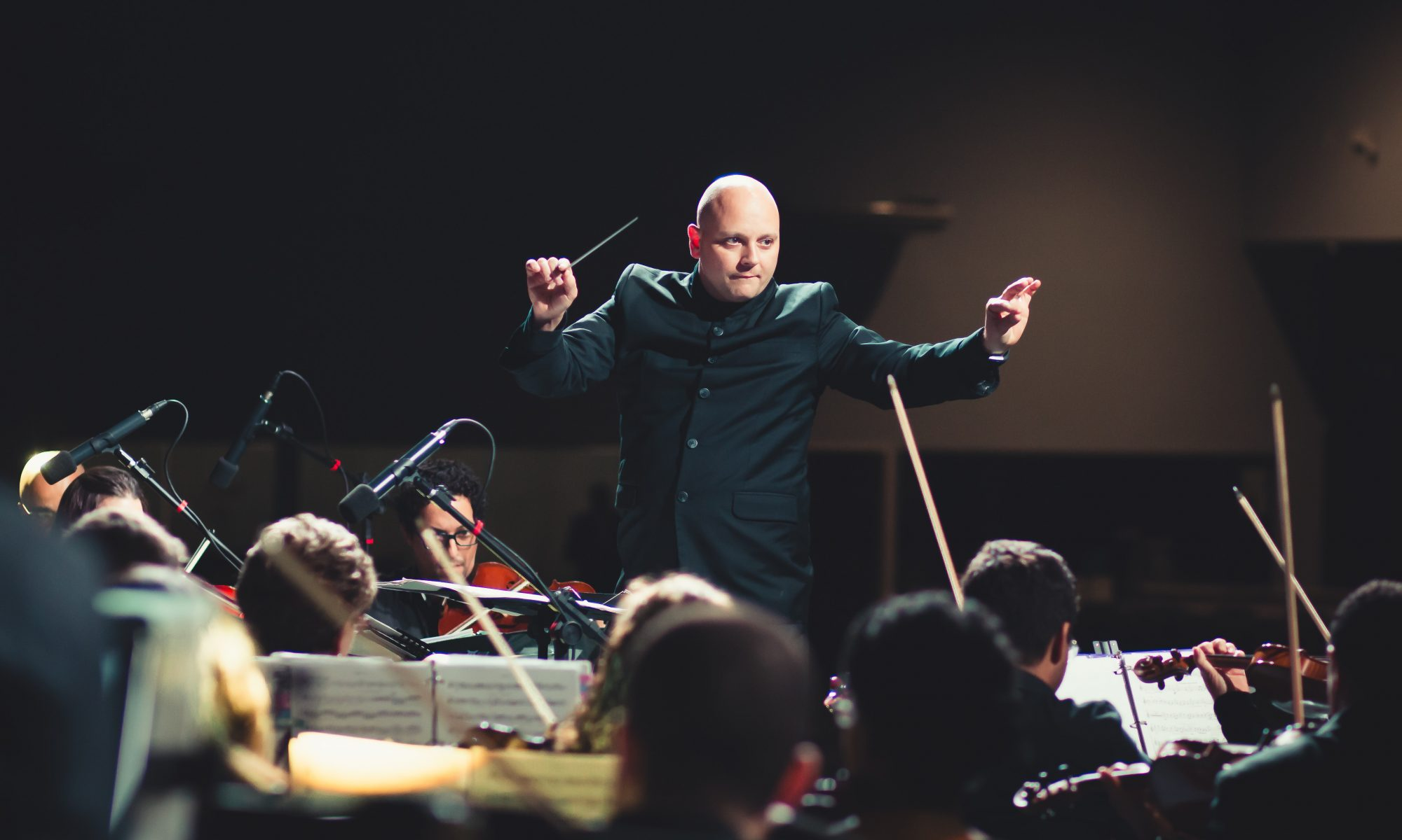 Orchestra Conductor Performance